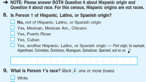 On the 2010 census form, the Hispanic origin question appeared before the question about race.