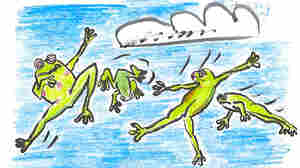 How We Learned That Frogs Fly