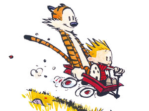 Bill Watterson's Calvin and Hobbes.