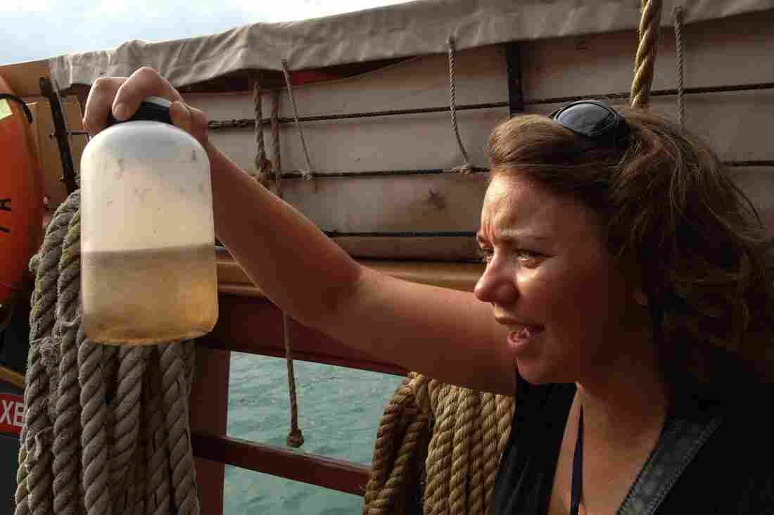 Researcher Sherri Mason looks for microbeads in a water sample from Lake Michigan.