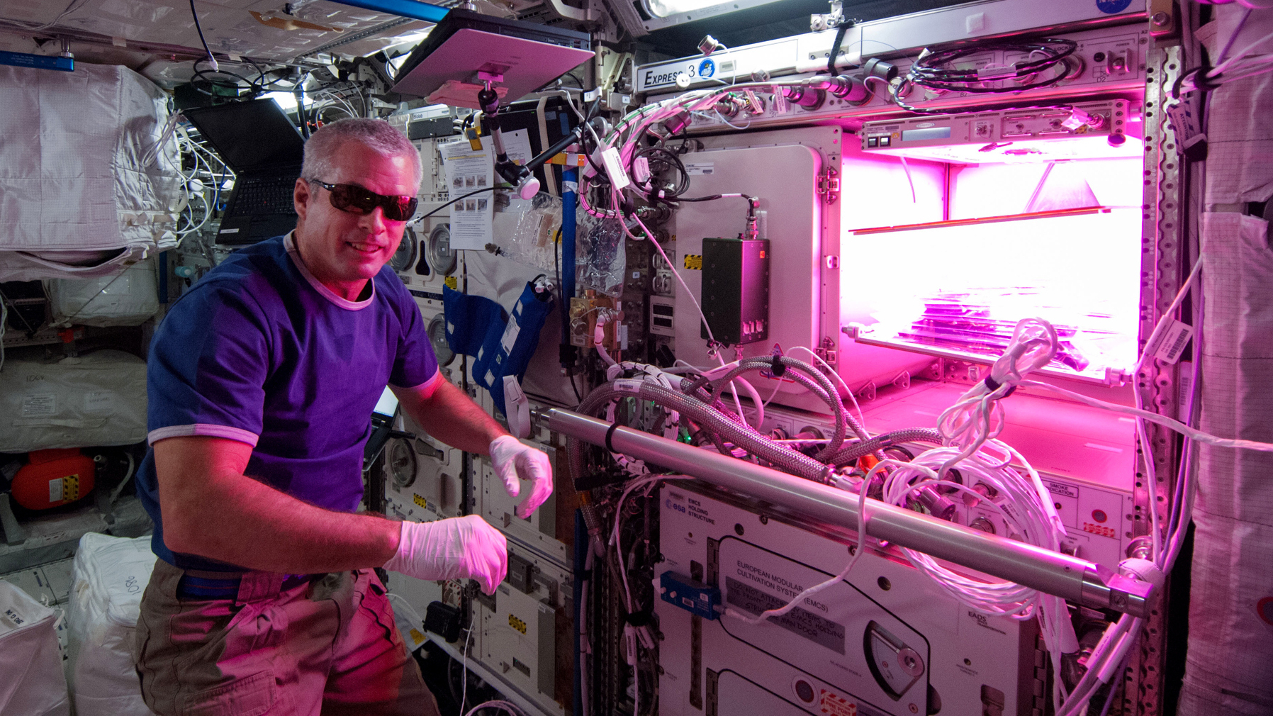 Astronauts will eat salad grown on the ISS 12