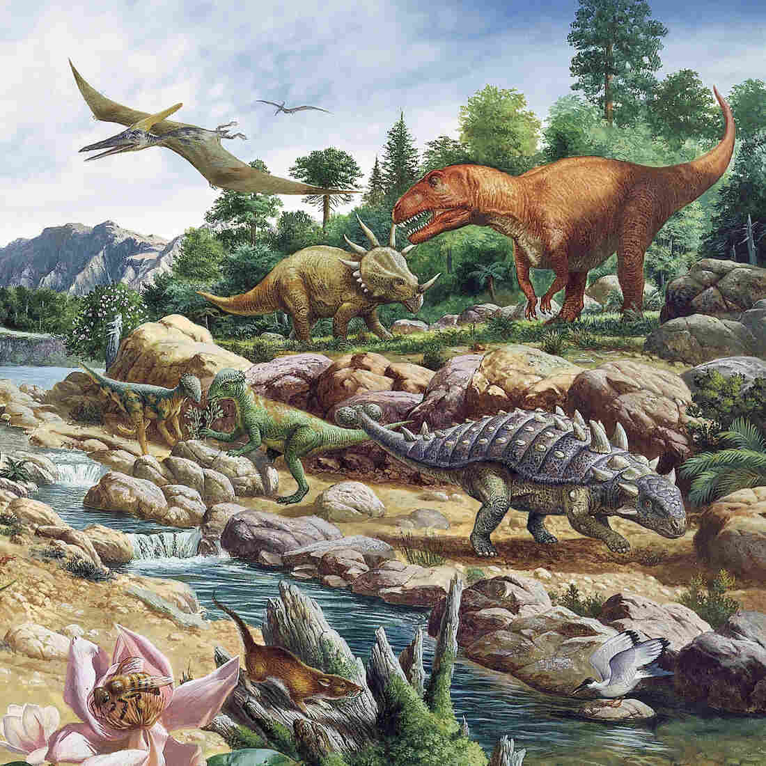 Maybe Dinosaurs Were A Coldblooded, Warmblooded Mix
