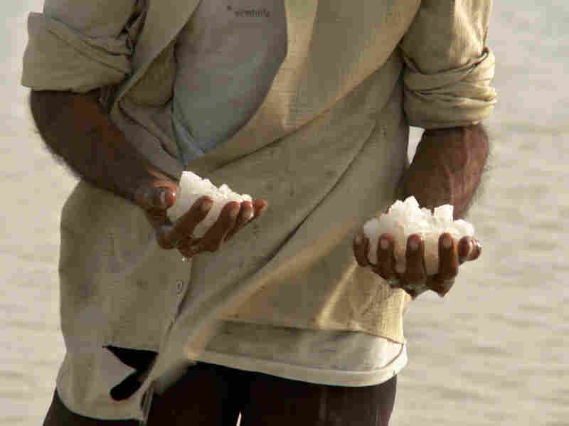 A salt farmer holds fistfuls of large, white crystals, which take months of backbreaking work to produce.