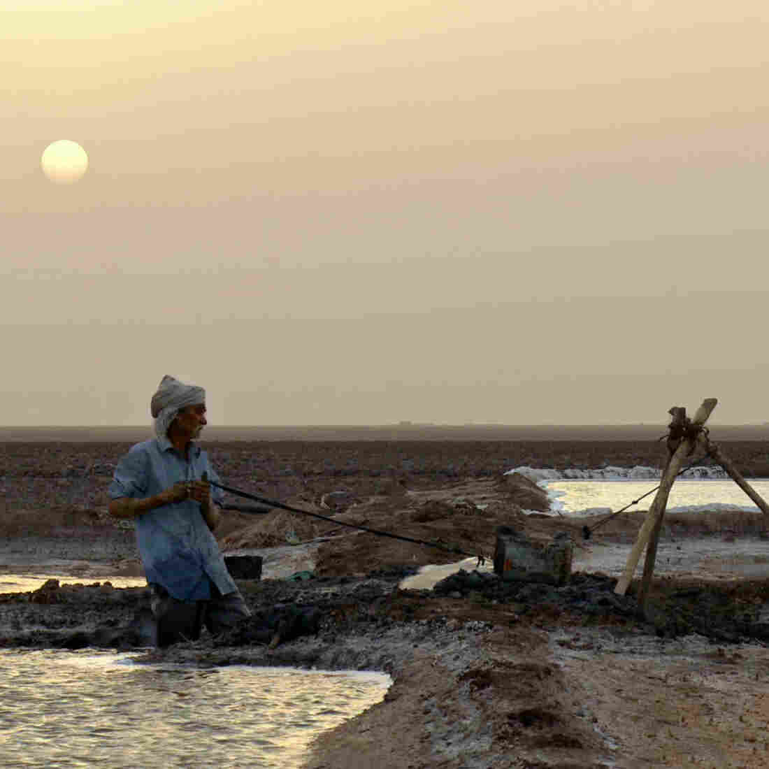 In 'My Name Is Salt,' The Toil And Joy Of India's Salt Harvest