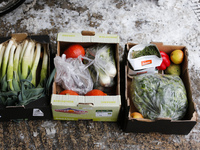 Europeans throw away 90 million tons of food each year, including these vegetables pulled from waste bins of an organic supermarket in Berlin. A new German website aims to connect surplus food with people who want it.