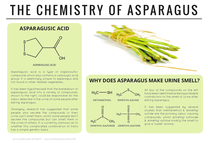Chemist with visual flair answers burning food science questions the chemistry of asparagus urtaz Images