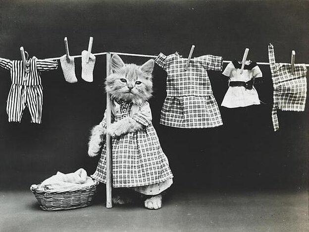 Hanging up the wash. Circa June 14, 1914.