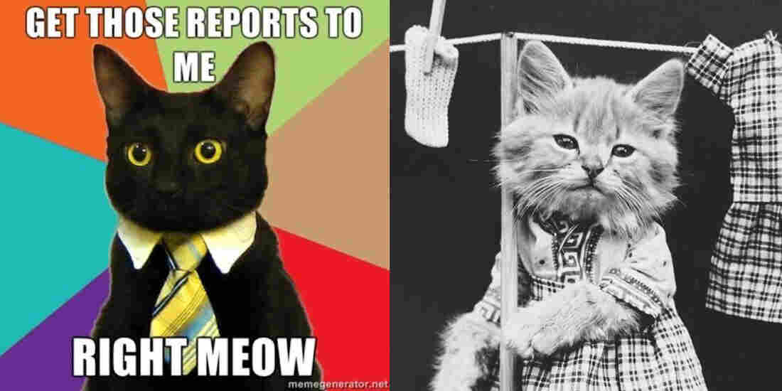 Business cat meme from KnowYourMeme and Hanging Up the Wash from the Library of Congress.