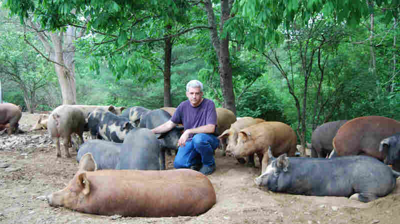 Michael Yezzi raises 1,000 pigs a year in Shushan, N.Y. He's worried about how to keep his farm safe from a disease that has no proven cure.