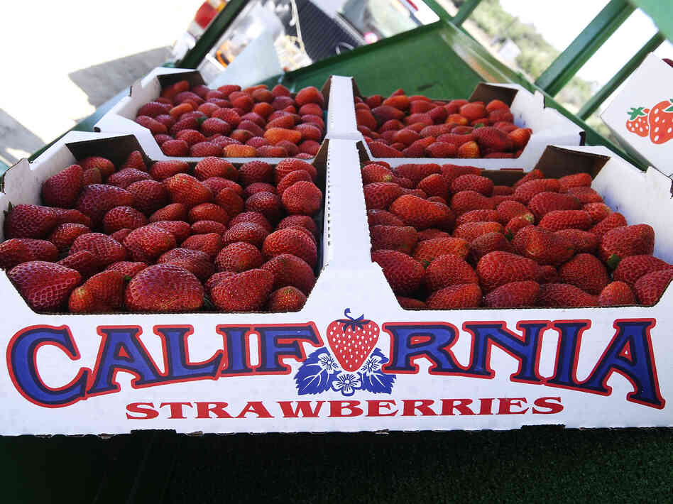 A flat of Albion strawberries at the Bob Jones Ranch fruit stand near Oxnard, Calif.
