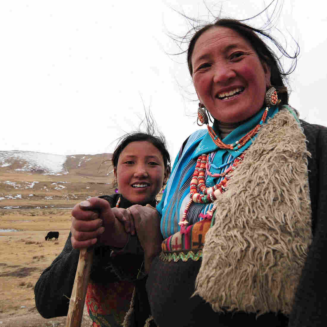 With Help From Extinct Humans, Tibetans Adapted To High Altitude