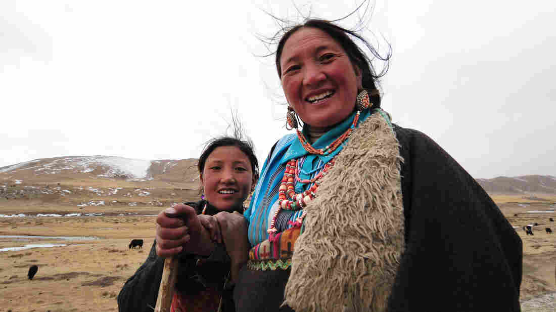 A mother and daughter herd their yaks a