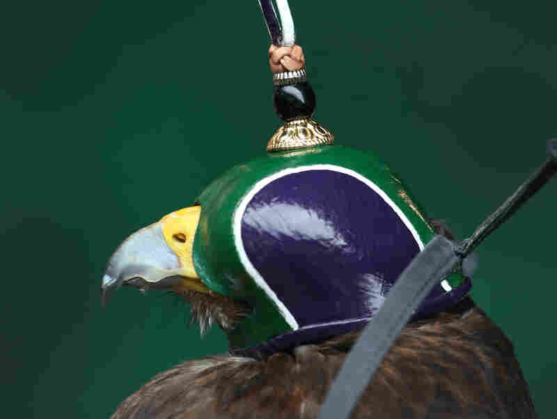 Rufus wears his special purple, green and white Dutch-style Wimbledon hood.