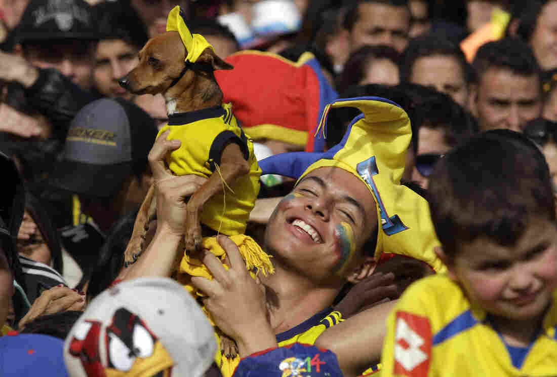 A Colombia soccer fan holds up his dog and celebrates a goal against Uruguay as he watches the World Cup round of 16 match on TV with others in Bogota, Colombia on Saturday.