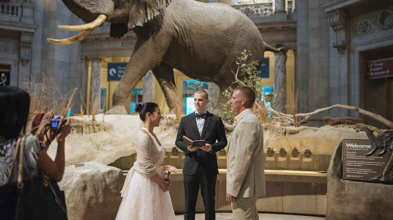 Jennifer Miller and Michael Bennett were married at the Smithsonian Natural History museum in Washington, D.C., using PopWed Co.