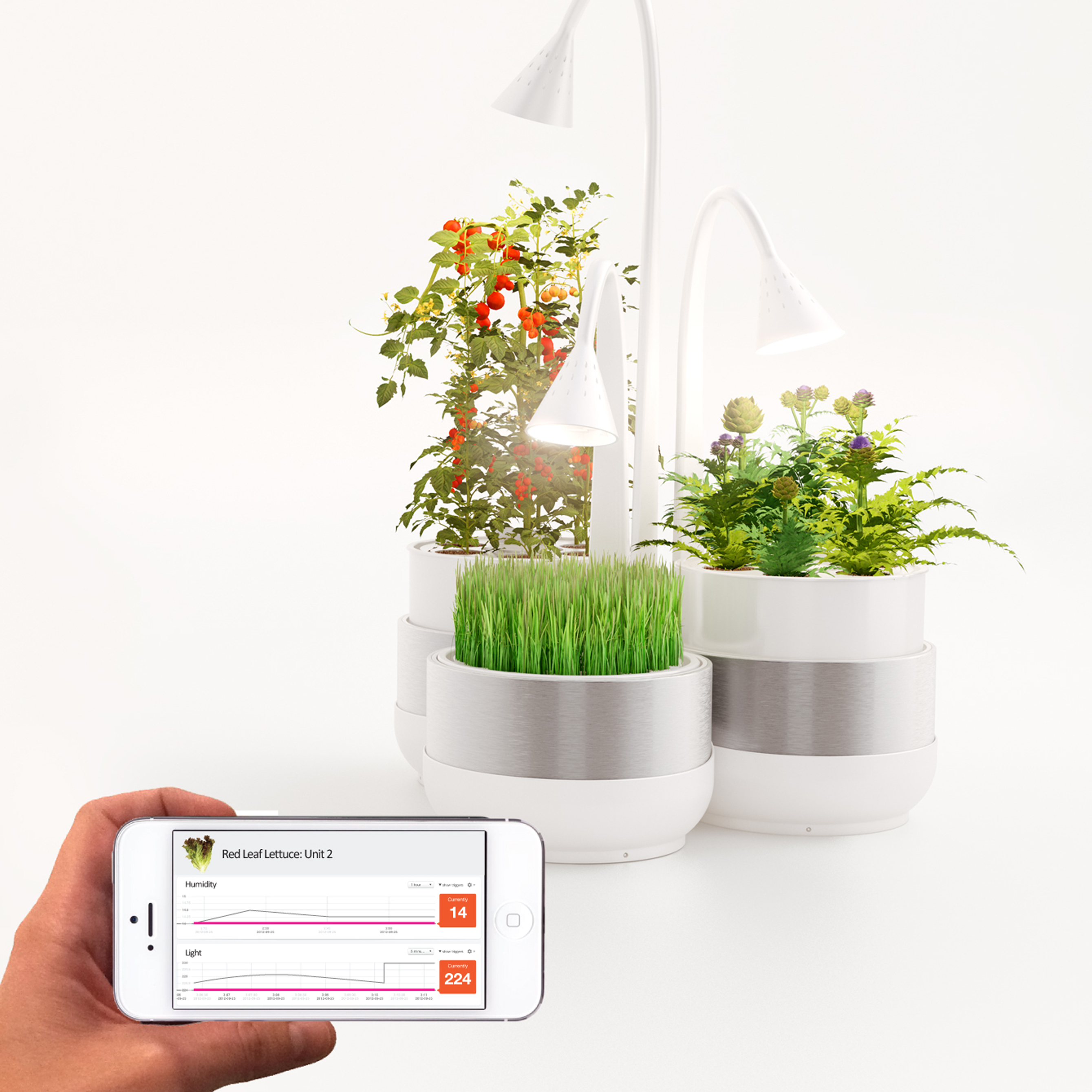 You can view and modify your plant's profile on the SproutsIO phone app.