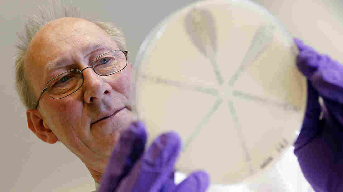 David Livermore, the director of the Antibiotic Resistance Monitoring and Reference Laboratory in London, studies a new class of superbugs, called carbapenem-resistant Enterobacteriaceae, or CRE.