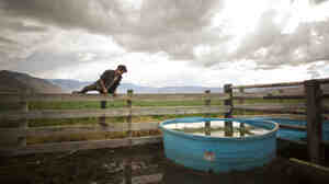 Nick Marino feeds and waters the livestock at Deep Springs College, an exclusive, all-male institution in a remote valley in California.