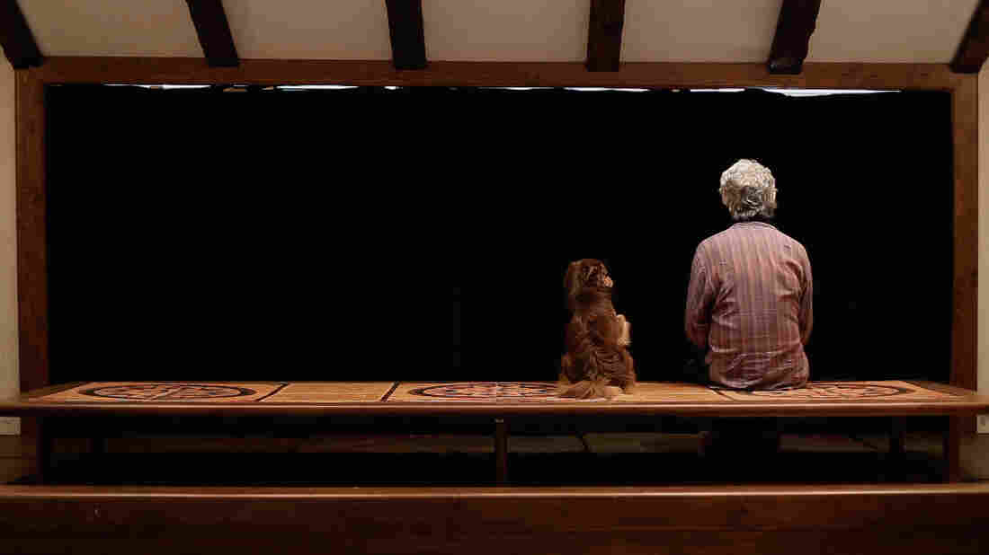 Filmmaker Jafar Panahi wrote, directed and produced Closed Curtain — a film based off his own personal experiences in hiding with his dog from the Iranian government.