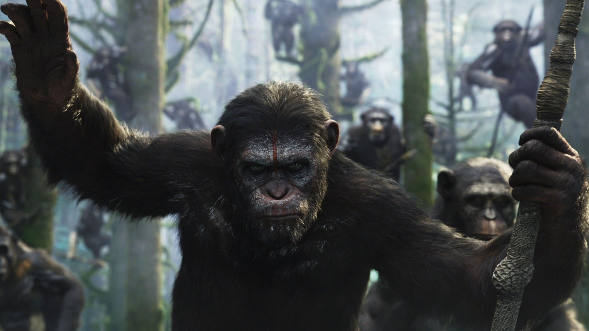 Movie Review Dawn Of The Planet Of The Apes Npr