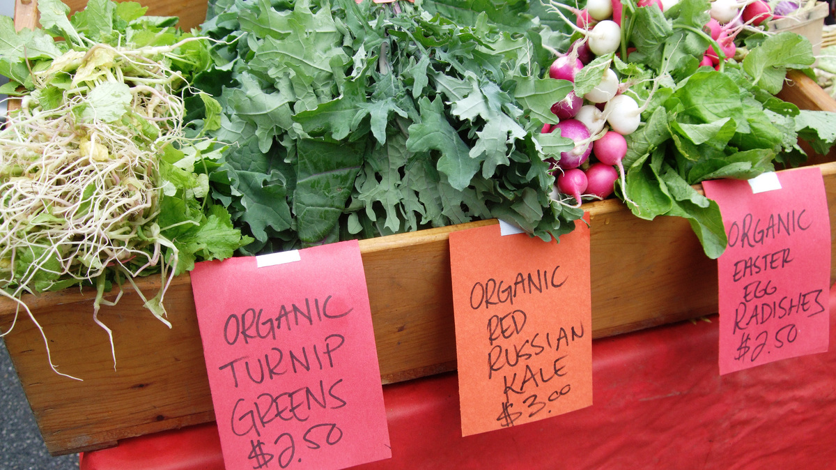 organic food informative essay An informative essay is also often called an expository essay organic foods are basically those kind of food which are without pesticides and antibiotics organic farming began in the united states in the late 1940s and gradually it spread all over and it has now become a multi-billion dollar industry.