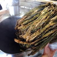 The sugar kelp used to make beer.