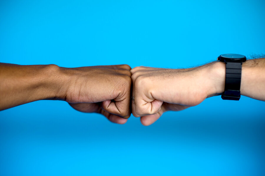 In the world of global gestures the fist bump stands alone goats in the world of global gestures the fist bump stands alone m4hsunfo Gallery