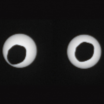 Solar eclipse or cross-eyed space alien?