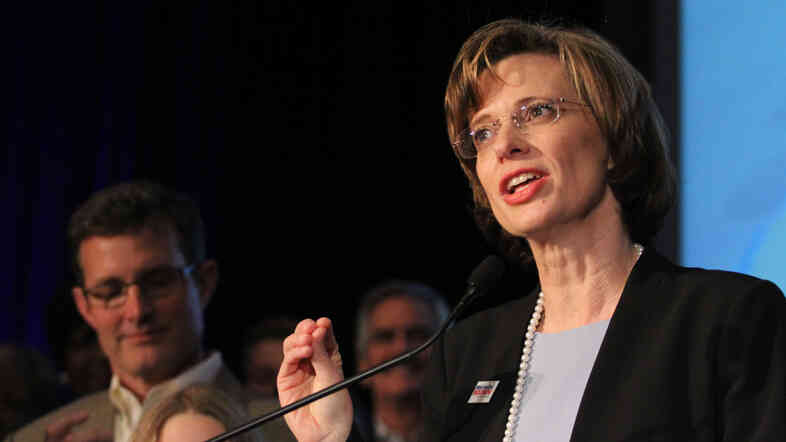 Senate candidate Michelle Nunn of Georgia is one of several Democratic women making strong election bids.