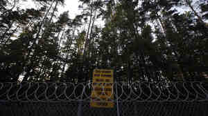 Barbed-wire fence surrounding a military area is pictured in the forest near Stare Kiejkuty village, close to Szczytno in northeastern Poland. The CIA ran a secret jail on Polish soil, the European Court of Human Rights ruled Thursday.