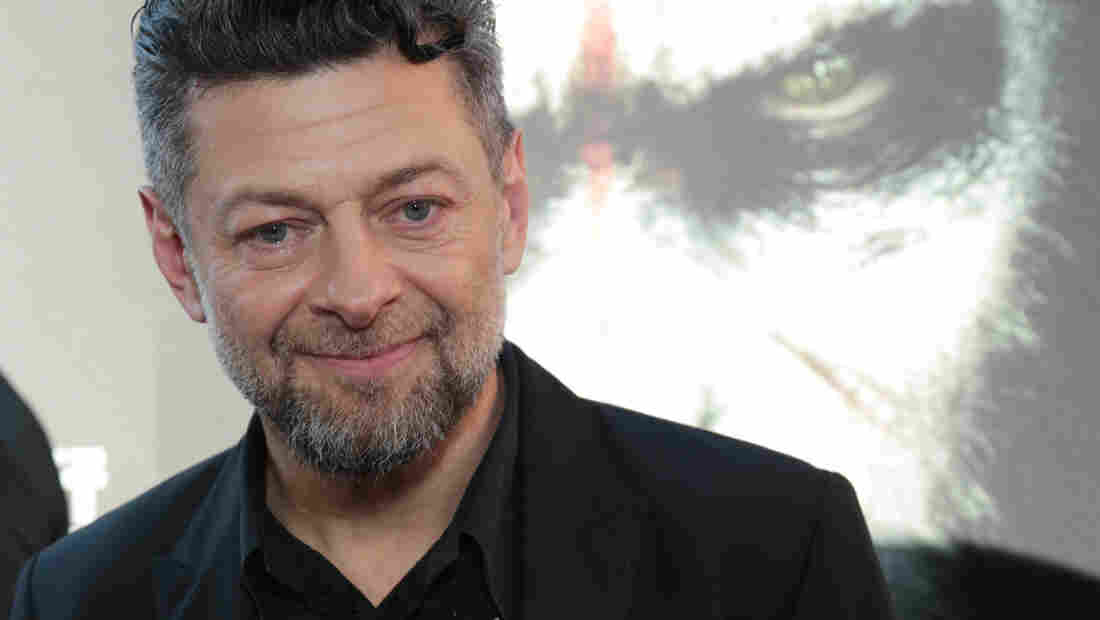 Actor Andy Serkis, known for his role as Gollum in the Lord of the Rings series, plays Caesar the ape in Dawn of the Planet of the Apes.