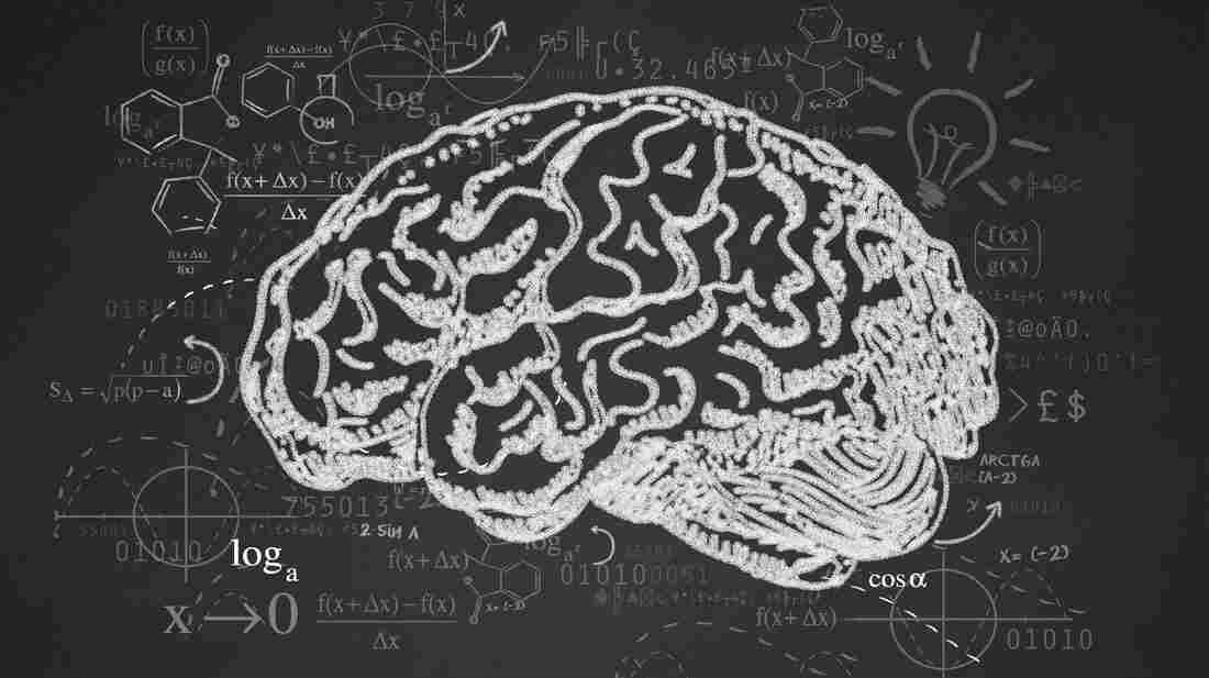 Profile illustration of a brain in black and white.