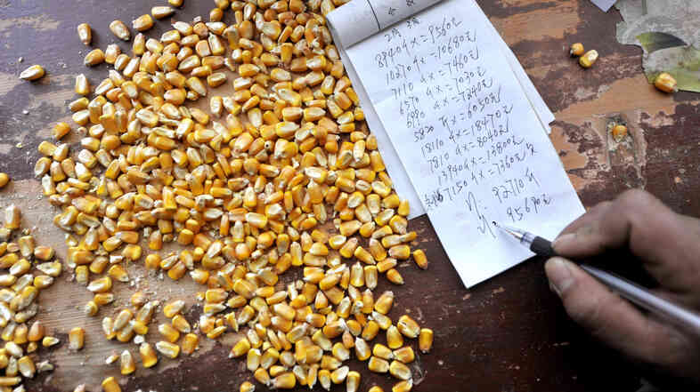 A corn purchaser writes on his account in northwest China in 2012. In November 2013, officials began rejecting imports of U.S. corn when they detected traces of a new gene not yet approved in China.