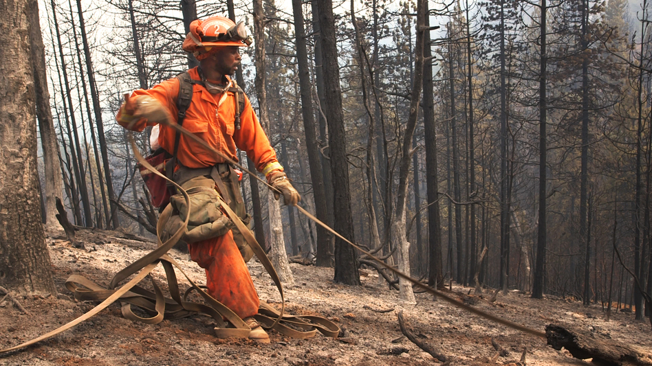 Emir Dunn, an inmate firefighter stationed at the Chamberlain Creek Conservation fire camp in California, at work on a fire. About 4,000 inmate firefighters battle blazes across the state. (Adam Grossberg/KQED)