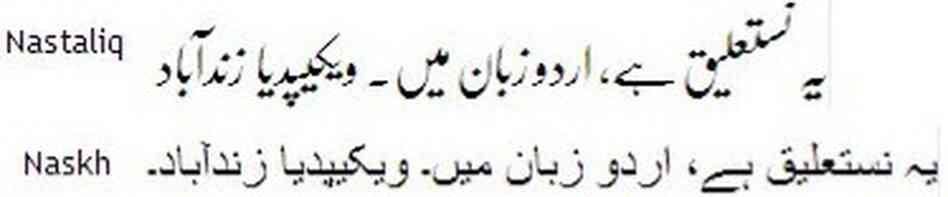 representation in the media essay in urdu
