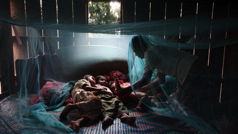 Drug-Resistant Malaria Spreads Across Southeast Asia