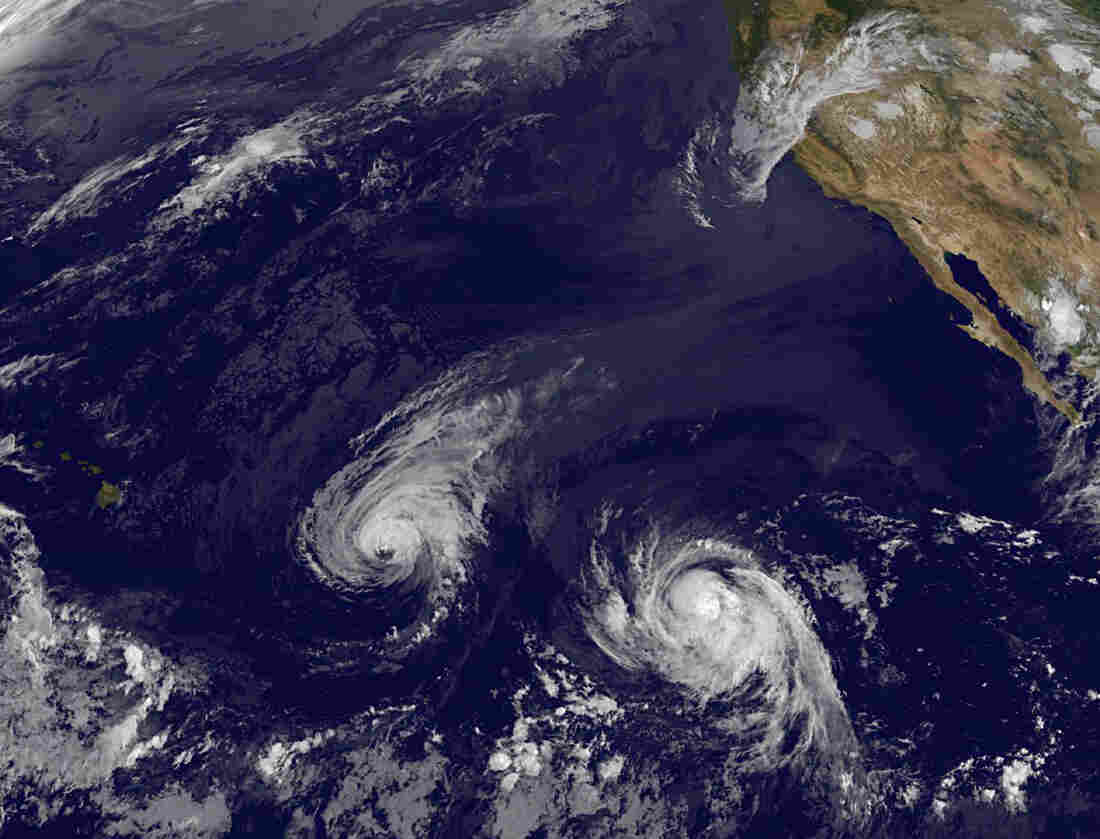 This image provided by NOAA shows Hurricane Iselle (left) and Hurricane Julio.