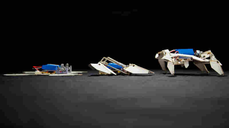 Transformer Paper Turns Itself Into A Robot. Cool!