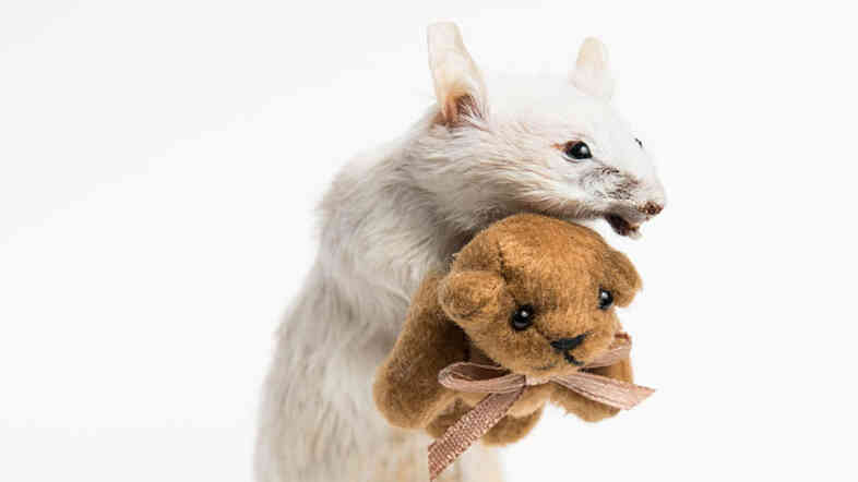 """""""I think actually handling something dead is an important part of coming to terms that all of us have in common,"""" says taxidermist Margot Magpie, who created the piece above."""