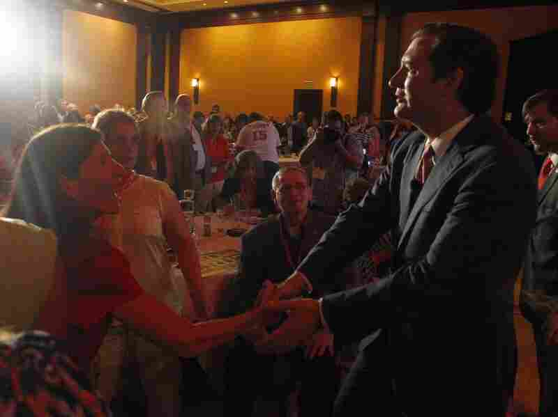 Sen. Ted Cruz presented himself at the event as the one to take on Washington and defend the Constitution.