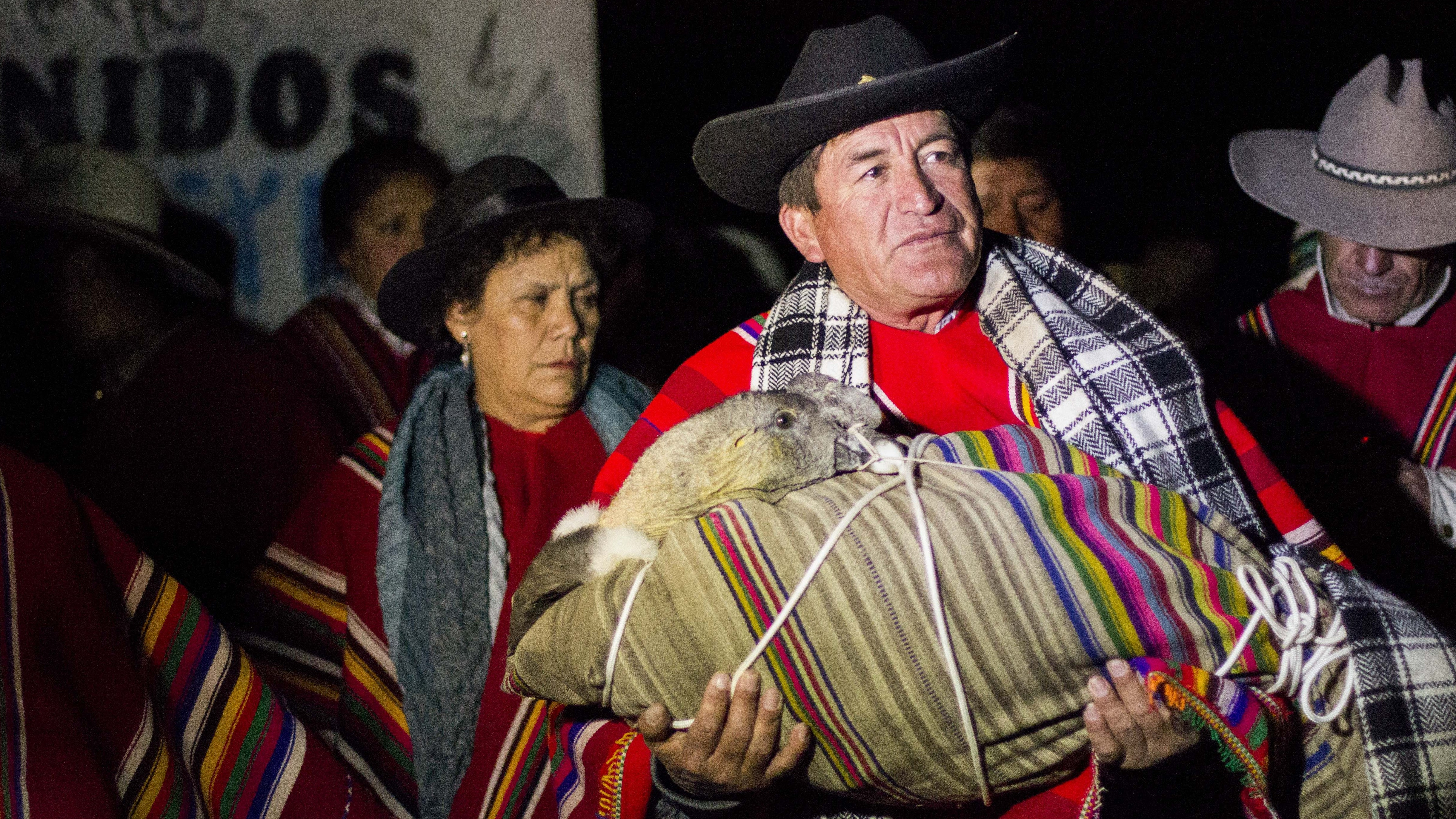 In Peru's Blood Festival, It's The Condor Versus The Bull