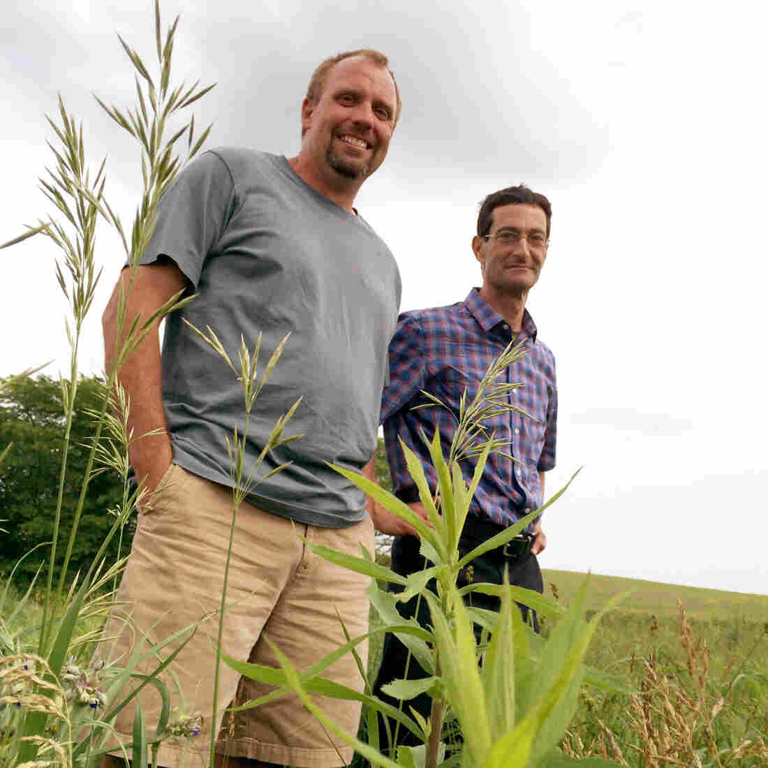Iowa's Corn Farmers Learn To Adapt To Weather Extremes