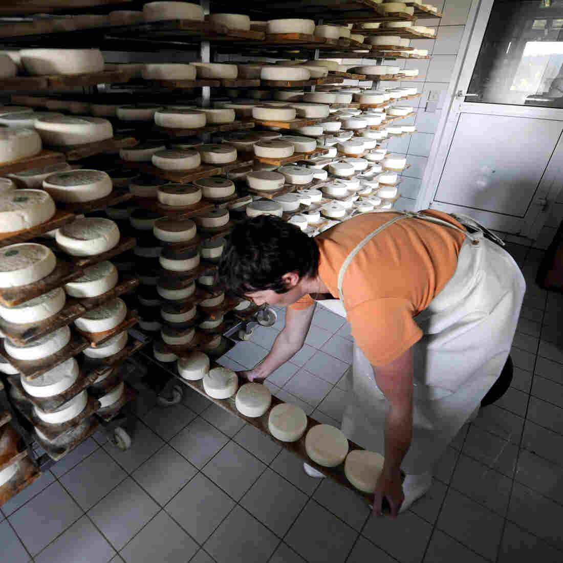 Unlocking France's Secrets To Safer Raw Milk Cheese