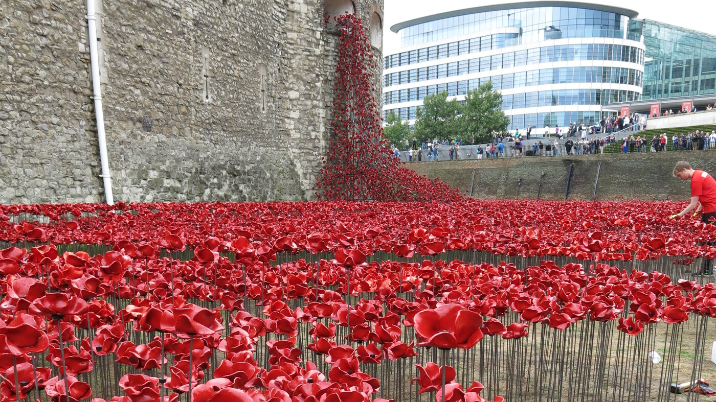 A sea of ceramic poppies honors britains wwi dead npr buycottarizona Images