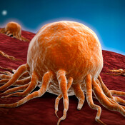 Conceptual image of cancer virus.
