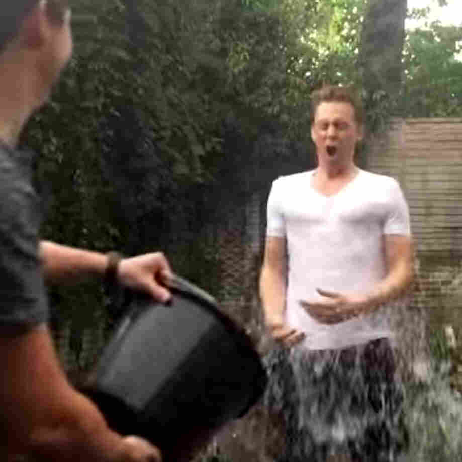 The Ice Bucket Challenge And Other Good Causes: Do Stars Really Help?