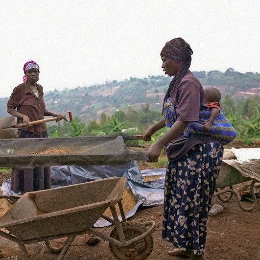 "Women inspect clay that will be used for a new floor near Masoro, Rwanda. ""Sieving out rocks and clumps allows the floor to have a smooth and fine surface,"" says Gayatri Datar, whose NGO, EarthEnable, is installing new, earthen floors in homes where ordinary dirt floors pose health risks."