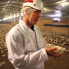 Bob O'Connor, a Foster Farms veterinarian, holds an 11-day-old chick at a ranch near the town of Merced, in California's Central Valley.