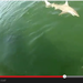 WATCH: Shark Vs. Grouper. Shark Loses.