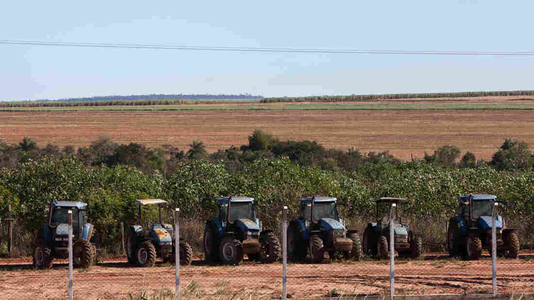"""Tractors sit on a sugarcane plantation on the land of a Guarani-Kaiowá indigenous community in Brazil, where Oxfam has alleged """"land grabs"""" unfairly take land from the poor. The United Nations is drafting voluntary guidelines for """"responsible investment in agriculture and food systems"""" in response to such concerns."""